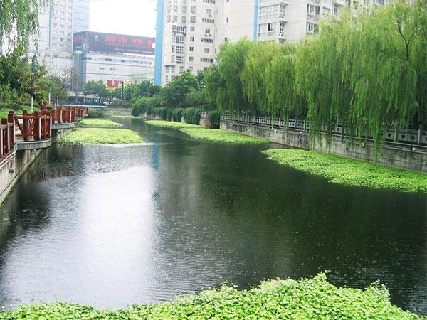 自然水体修复