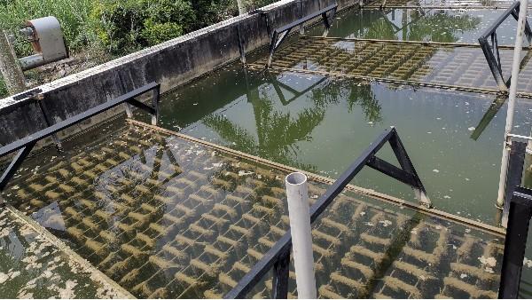 生物绳填料是怎么处理污泥回流的?