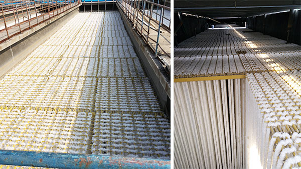 山东齐鲁石化炼油厂橡胶厂废水填料改造工程案例